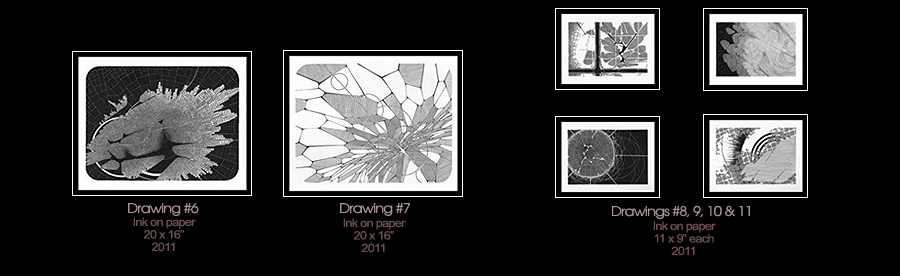 Germination Drawings 6-11